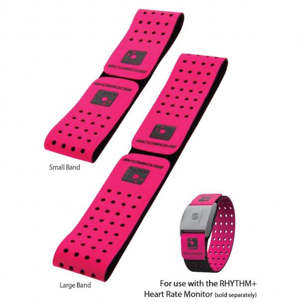 Rhythm+ Strap - Pink